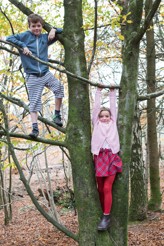 Haldon climbing trees