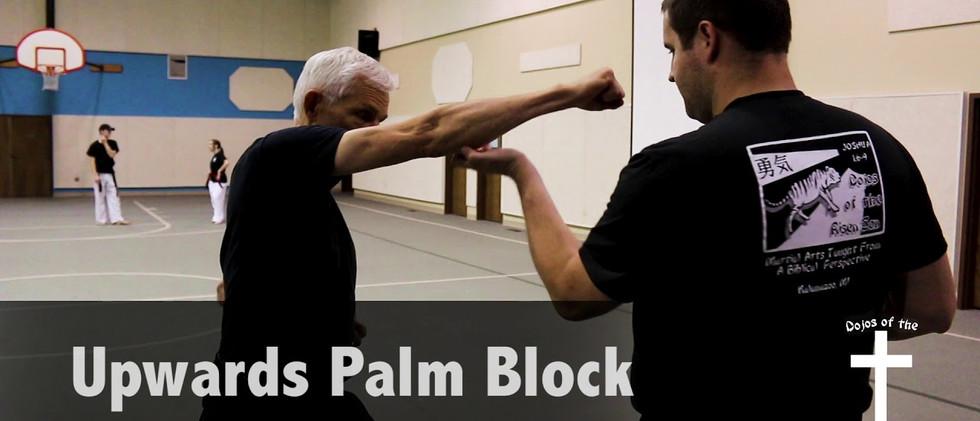 Upwards Palm Block