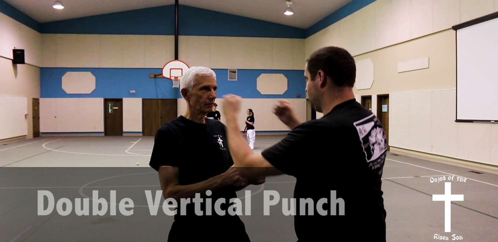 Double Vertical Punch