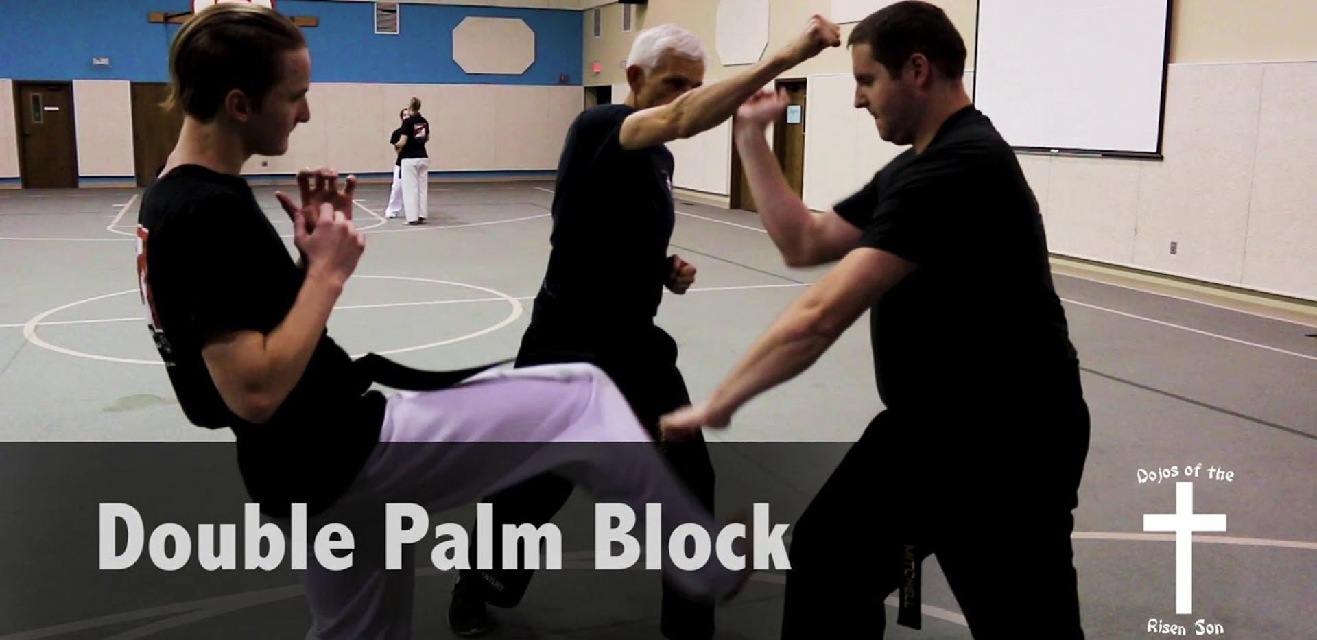 Double Palm Block