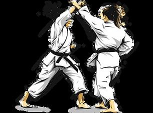 Karate Girls.png