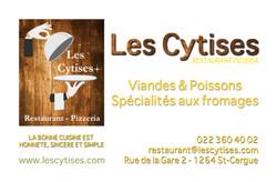 cv - Cytise