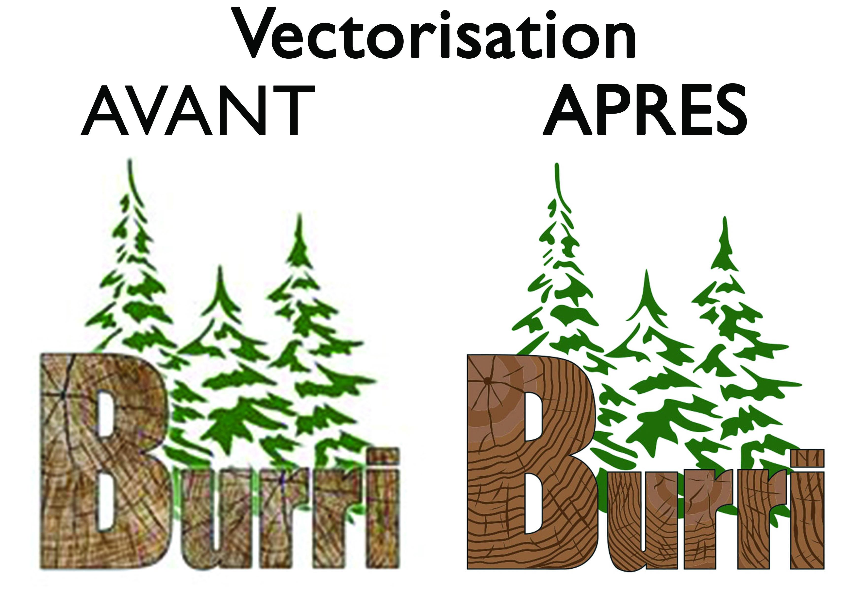 Vectorisation-Burri-Av.ap