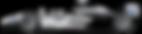RGPL98_21Tyrrell-icon-1024x576.png