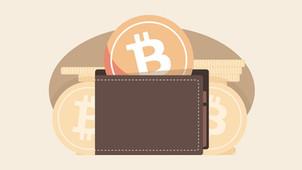 Portefeuilles Bitcoin, Hot Wallet et Cold Wallet?| Comprendre le Bitcoin! [Présentation]