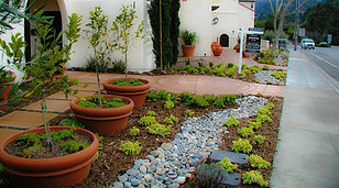 residentialplantingdesignservices.jpg