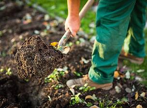 sarasota-landscaping-services-soil-for-g