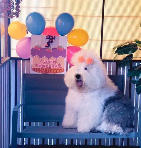 С Днем рождения Принцесса!