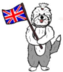 moscowdream бобтейл, староанглийская овчарка