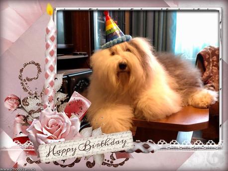 С Днем рождения Викочка!