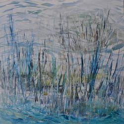 Wetlands_web.jpg