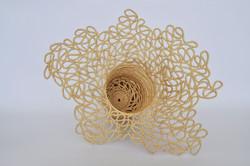 james-taylor-elizabeth-beauty of fractals01.jpg