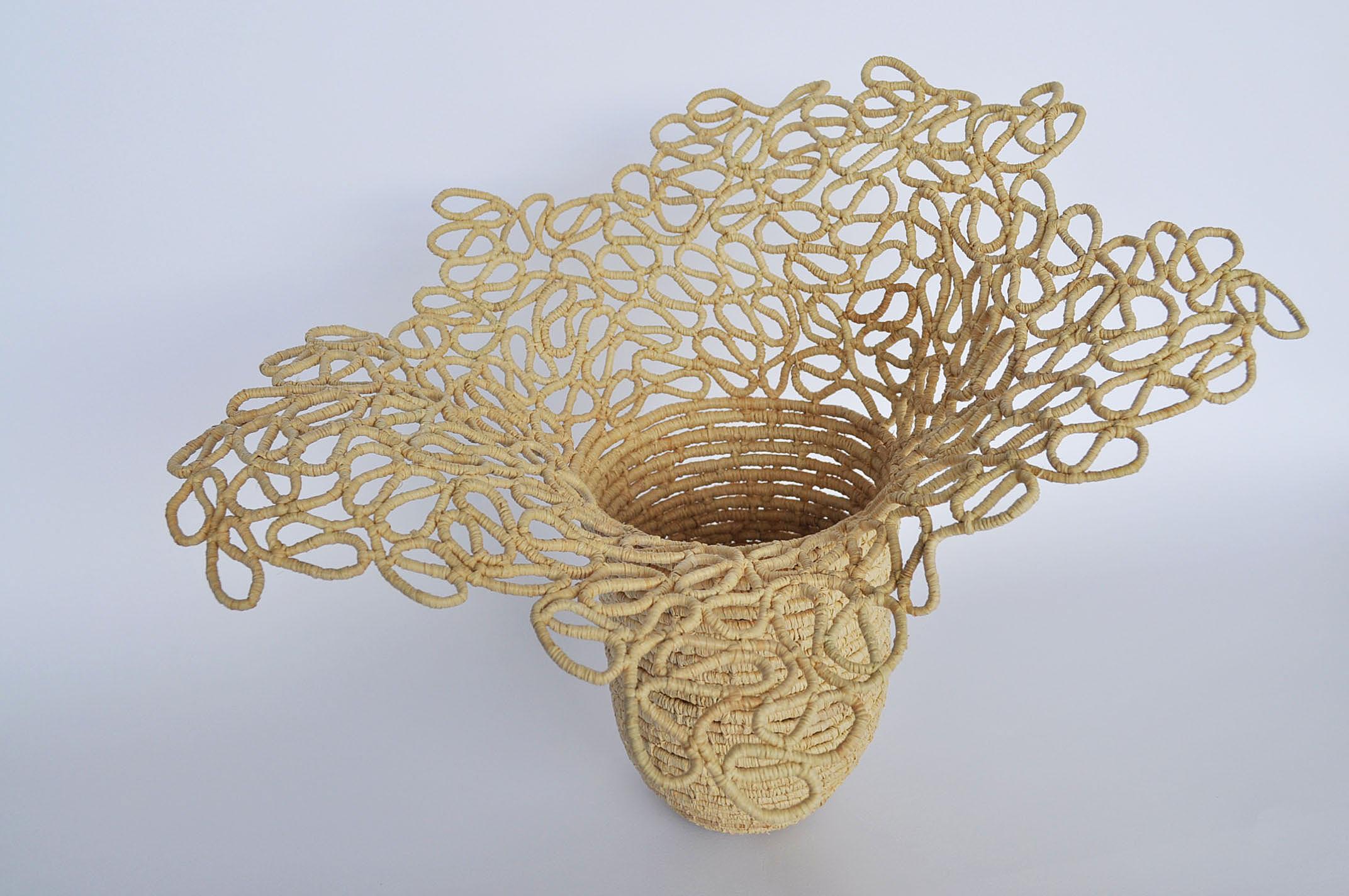 james-taylor-elizabeth-beauty of fractals02.jpg