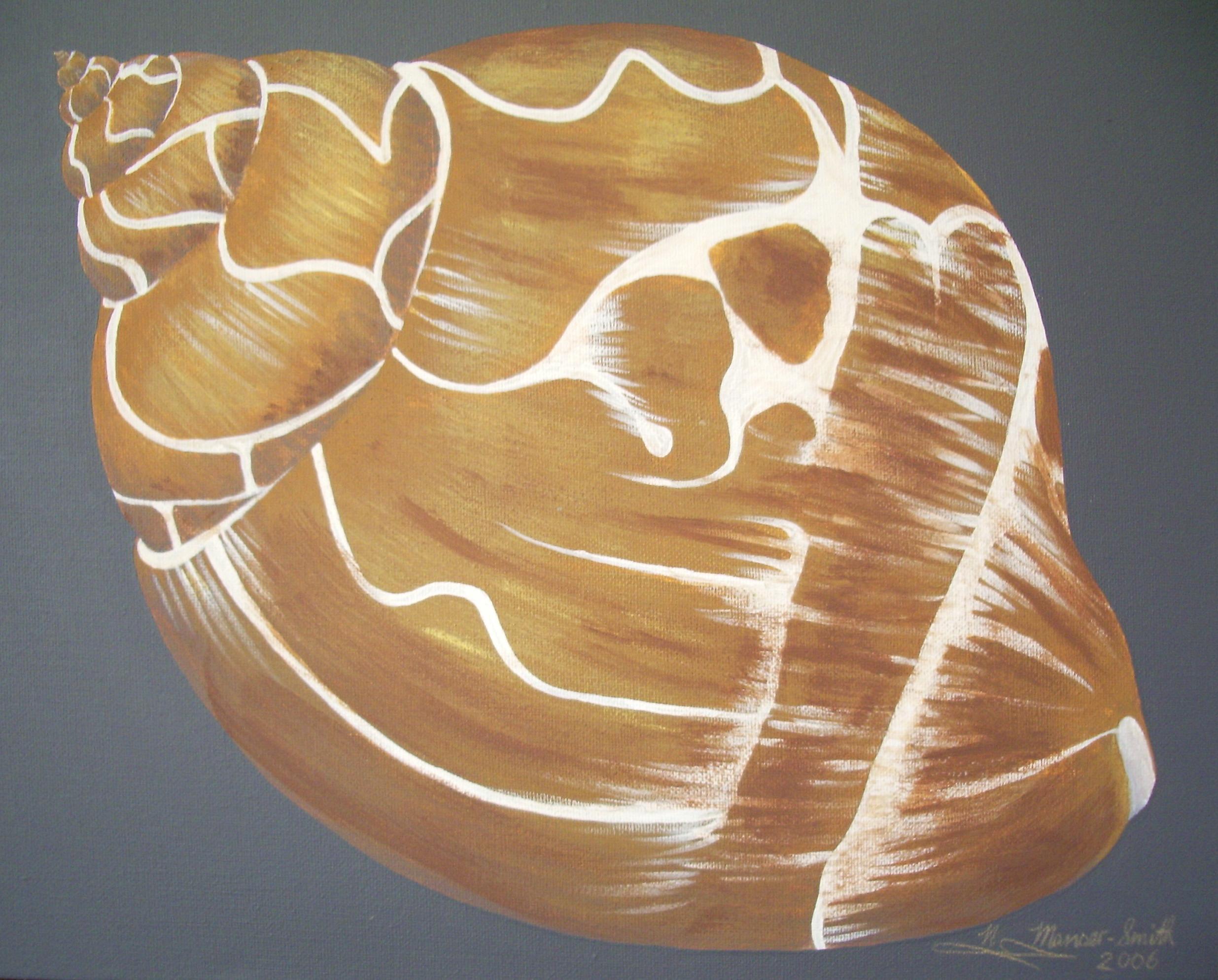Shell#1(lr)