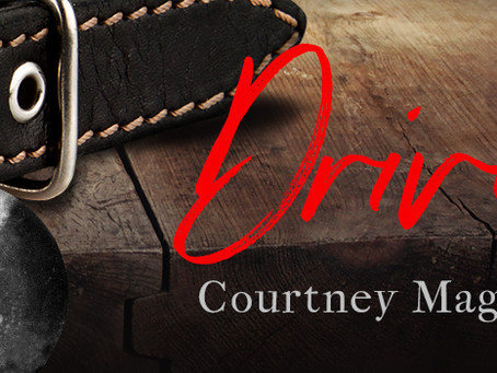 Drive Cover Reveal and Excerpt
