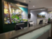 Koru Lounge photos.jpg