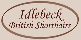 Idlebeck British Shorthairs