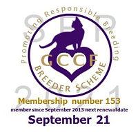 GCCF BS Logo 2021.jpg