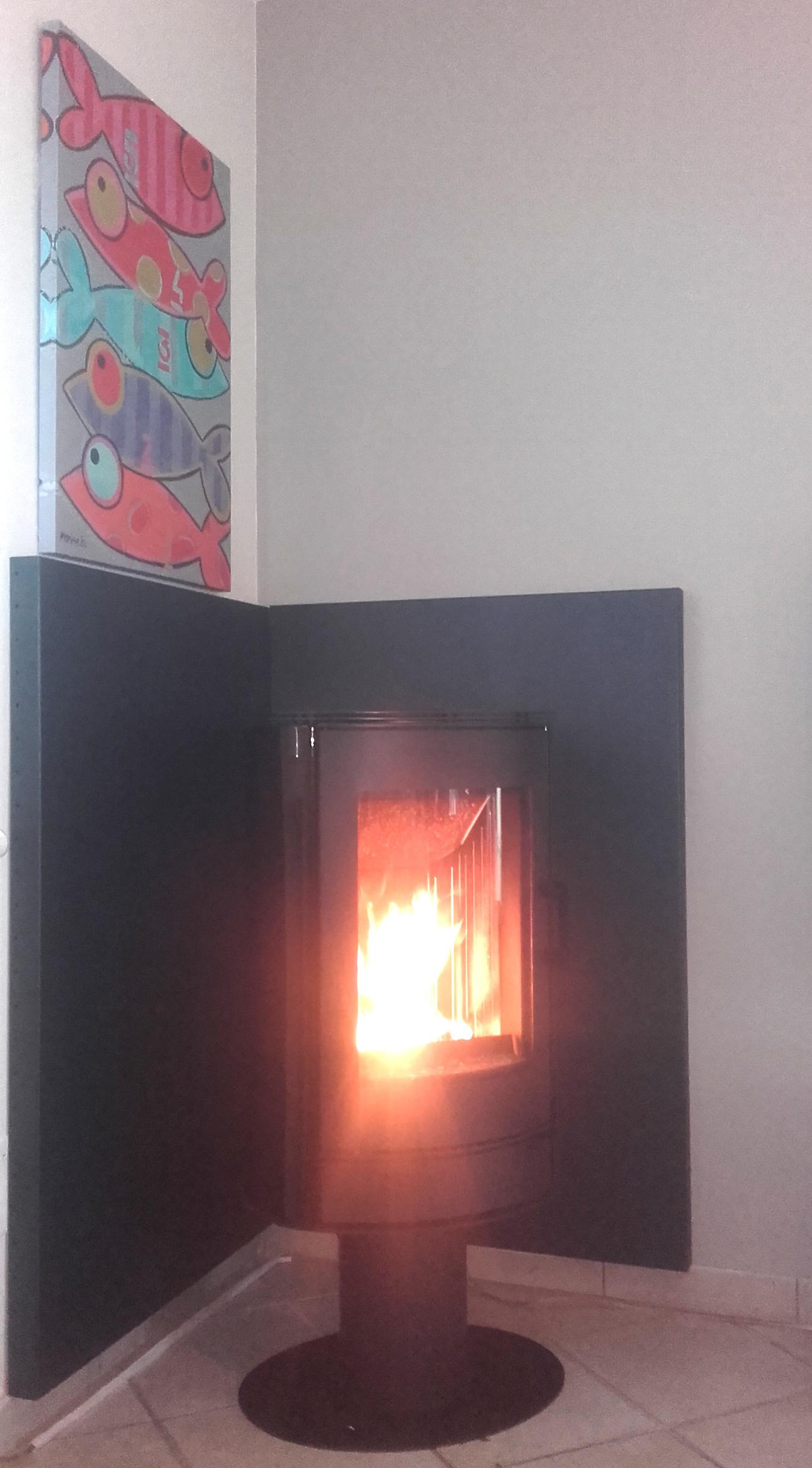Poêle-à-bois-Celsius-BRANSTAL