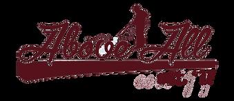 aapc 17 logo .png