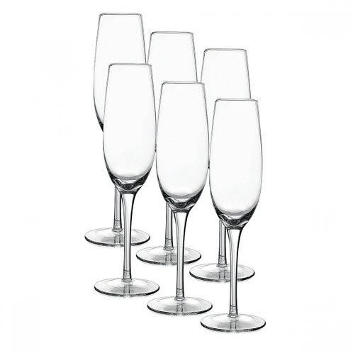 Kit com 6 taças para champagne