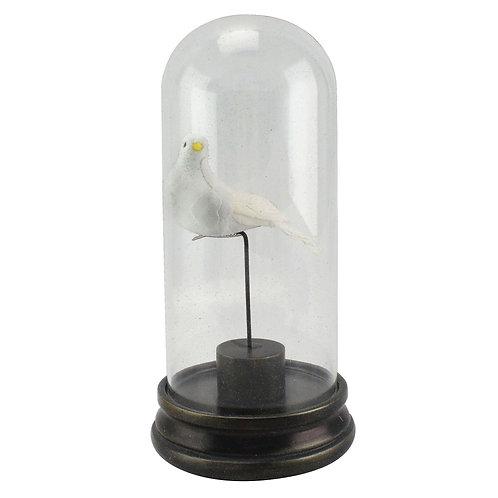 Pássaro decorativo de resina com Cápsula de Vidro