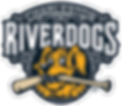 RiverDogs primary logo (1).png