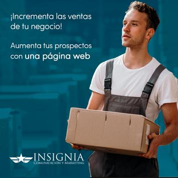 Insignia (nosotros)