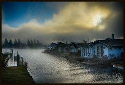 foggy morning on Portage Bay