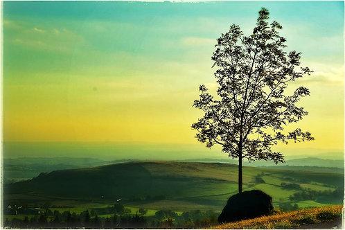 Laquiole Sunset
