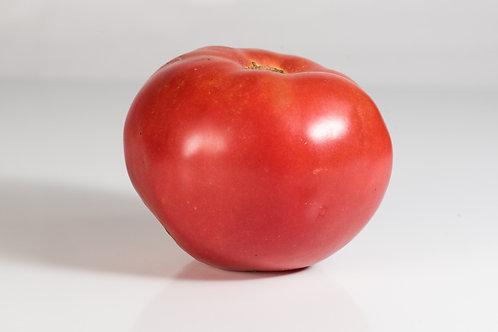 Tomato - Hubert's Pink