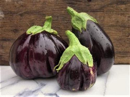 Eggplant - Black Beauty