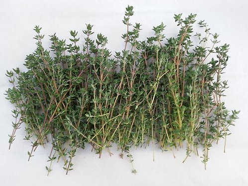 Thyme - German Winter