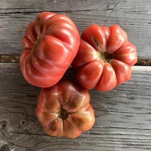 Tomato - Calabash