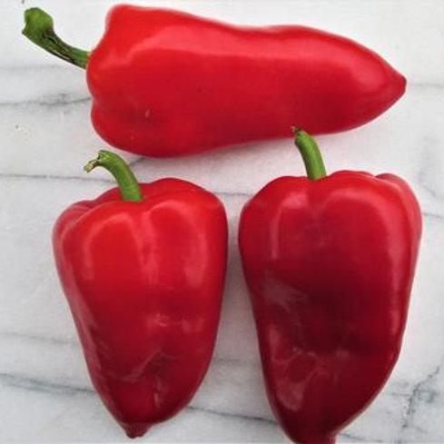 Pepper - Lipstick