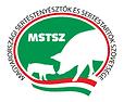 mstsz.png