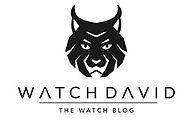 WatchDavid.jpg