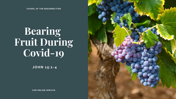 Bearing Fruit During Covid-19: 29 - 30 August 2020