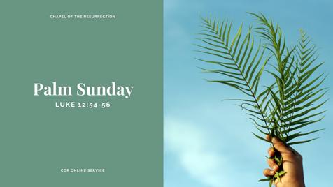 Palm Sunday: 4 - 5 April 2020
