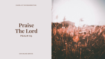 Praise the Lord: 11 - 12 July 2020