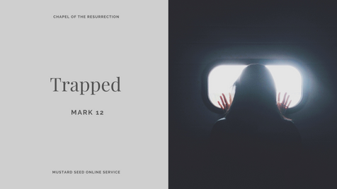 MSS: Trapped (Mark 12) - 18 October 2020