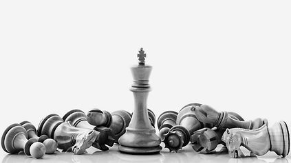 Black and White King and Knight of chess