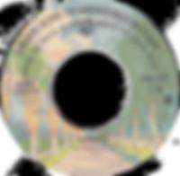 Paranoid / Iron Man Warner BrosGWB 0312 - 1974 - Back To Back Hits- side 1