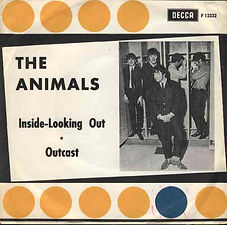 Animals Inside Looking Out Sweden