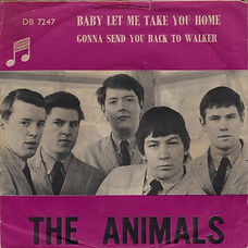 Animals Baby Let Me Take You Home  - Norway