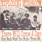 Exploding Mushroom - In collection - Can be swapped