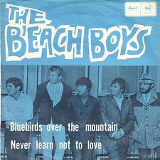 Beach Boys - Bluebirds Over The Mountain NOR