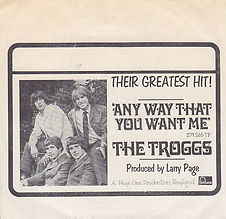 Troggs Any Way You Want Me Norway