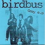 Birdbus