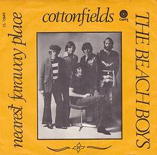 Beach Boys Cottonfields Denmark